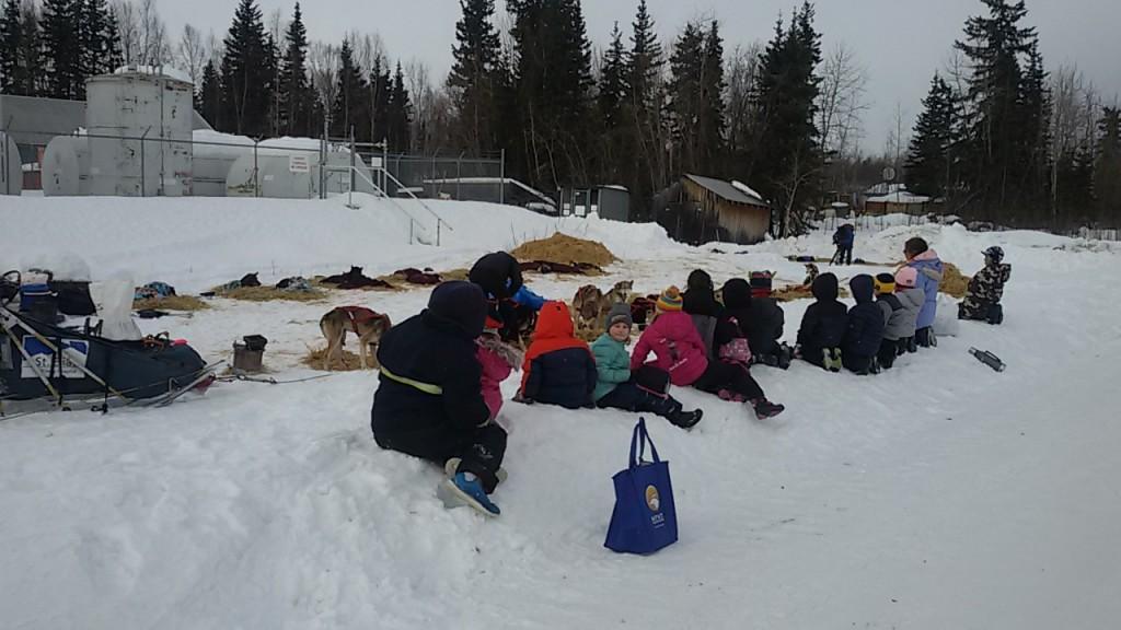 Los niños viendo la Iditarod de perros